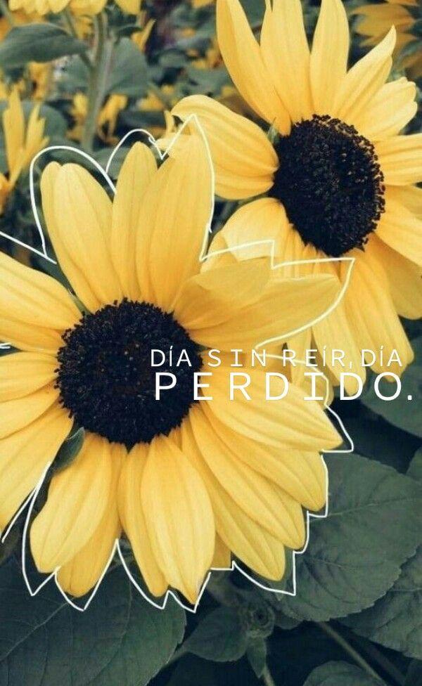 Feliz día... #Positivismo