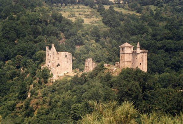 Dans une boucle de la Maromme, affluent de la Dordogne, se dressent les tours des seigneurs de Merle Cette famille s'étoffa par mariage de nombreuses branches, qui souhaitèrent toutes avoir leur résidence au même endroit. Il en résulte un amoncellement de tours, dont la construction s'échelonne du 12° au 14°s