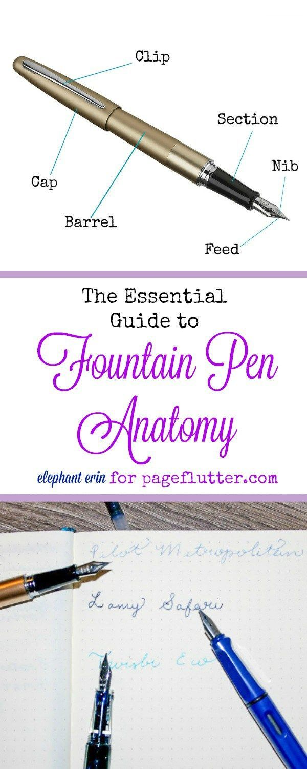The Essential Guide to Fountain Pen Anatomy | Happy mail, Fountain ...