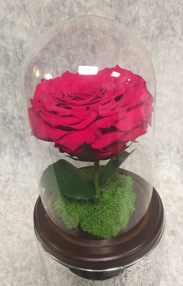 Inquire about our Everlasting preserved roses
