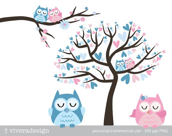 Owl Love Birds In Blue And Pink Digital Clip Art