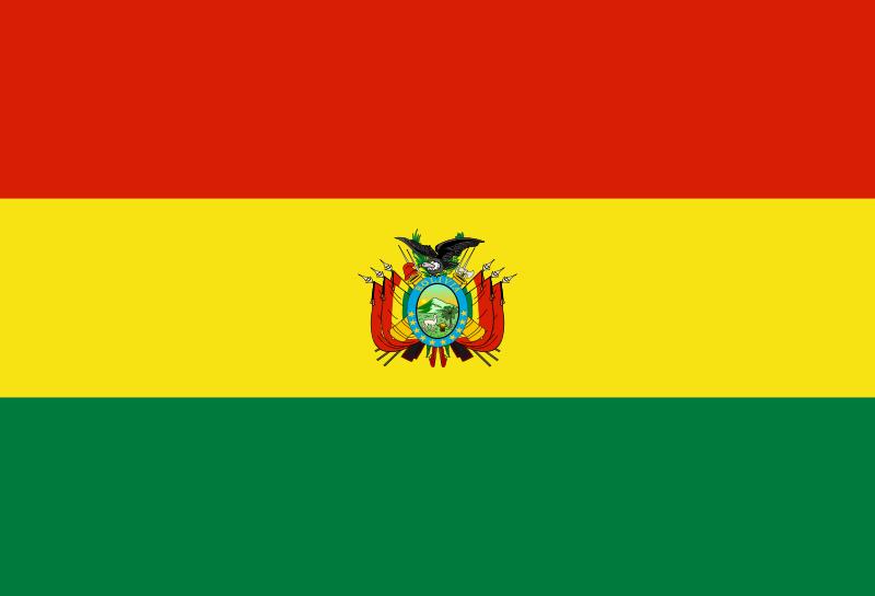 Bandera del Estado Plurinacional de Bolivia. | Bolivia, Bandeiras ...