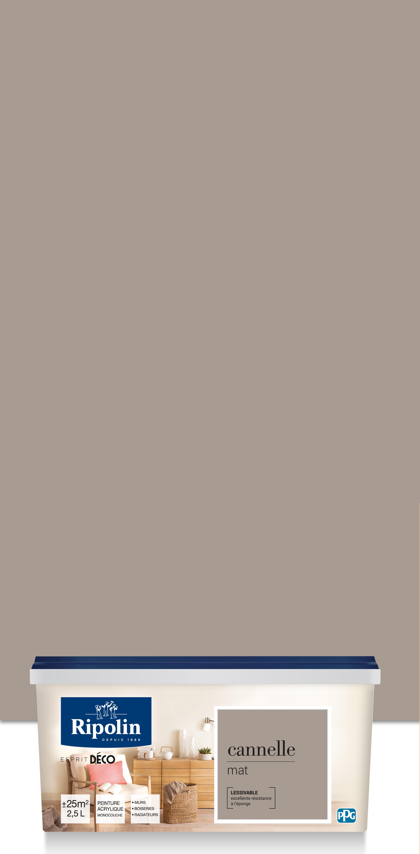 Peinture Gris Bleuté Clair Épinglé par amelie busnel sur peinture chambre (2020