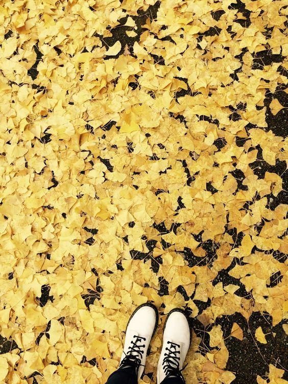 Yellow Aesthetic Tumblr Yellow Aesthetic Shades Of Yellow Hufflepuff Aesthetic