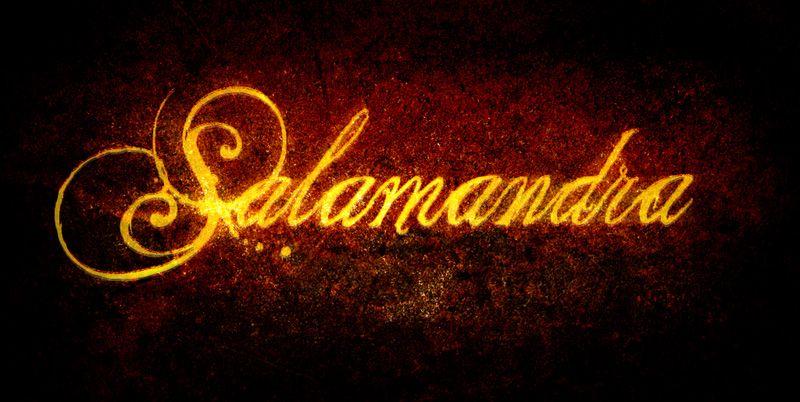 """Salamandra"" libro"