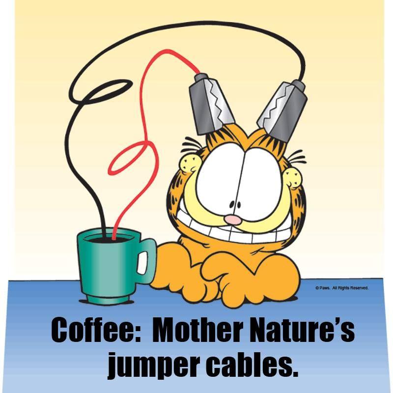 Citaten Over Koffie : Pin van jeanne klijberg op koffie pinterest