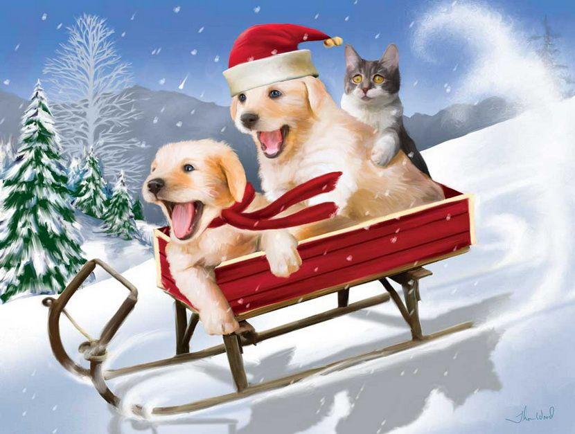 планировка новогодний привет картинки прикольные представлено большое количество