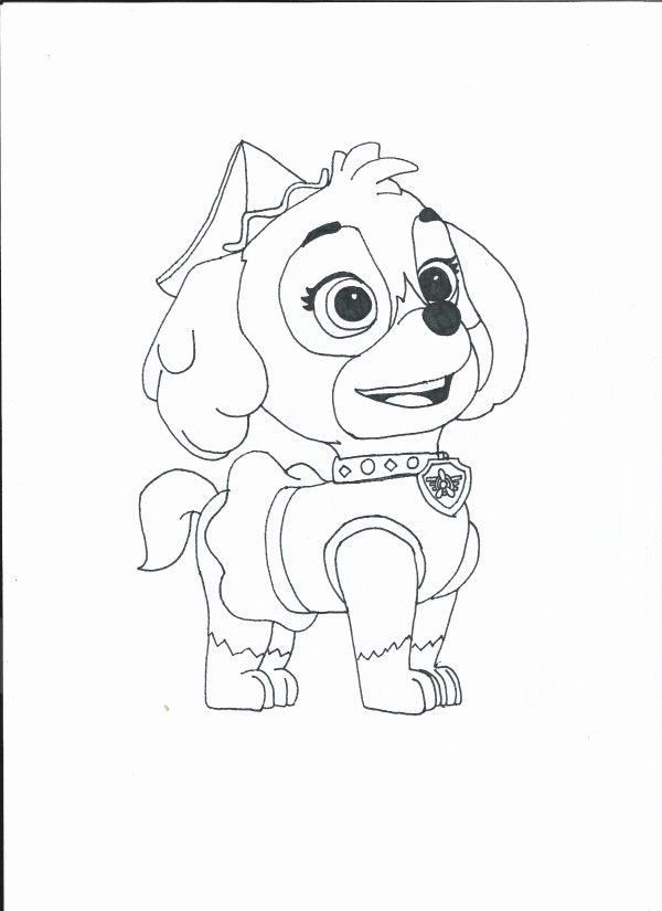 Paw Patrol Zuma Coloring Page Lovely Free Paw Patrol Coloring Pages Skye Download Free C In 2020 Paw Patrol Coloring Pages Paw Patrol Coloring Halloween Coloring Pages