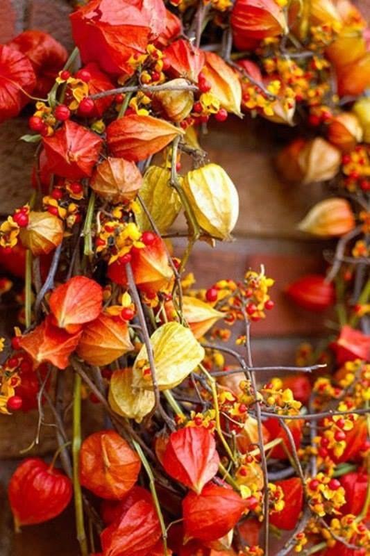 ~ Autumn Wreath ~