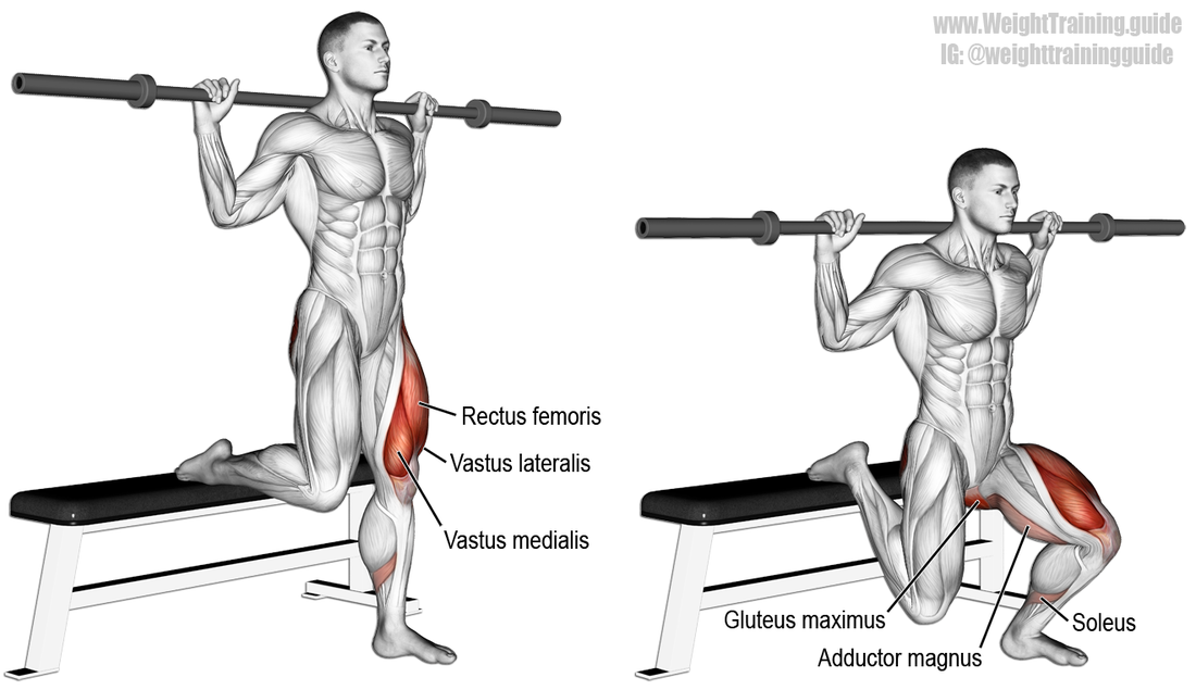 How To Improve Leg Strength For Batting In Cricket Squat Workout Lower Body Workout Barbell Split Squat