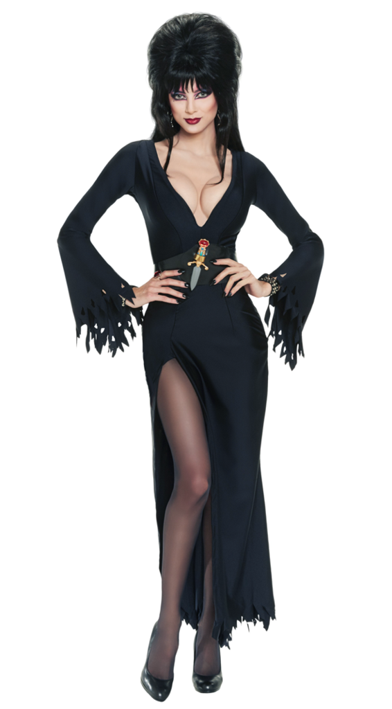 Secret Wishes Womens Elvira Mistress Of The Dark Adult Costume 41 out of 5 stars 40 3843  12543 Rubies Costume Deluxe Elvira Wig 38 out of 5 stars 29 1626  4425  so I didnt expect a perfect fit yet I am happy that it fit as nicely as it did The fabric was thicker most costumes which made it feel better amp hang better Im