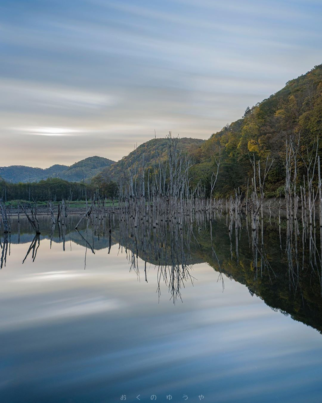 #japan #hokkaido  #hokkaidolikers  #japan_focus  #nature_brillance  #nature_special_  #addictedto_nature  #lovers_nippon  #jp_gallery  #ig_myshot  #ig_shotz  #ig_shotz_trees  #pixlib_jp  #pashadelic  #tu_natura  #japan_night_view  #japan_of_insta  #instagramjapan  #visitshiribeshi  #tokyocameraclub  #special_spot_  #love_bestjapan  #art_of_japan_  #北海道 #赤井川 #ファインダー越しの私の世界  #東京カメラ部 #japan_of_insta #japan #hokkaido  #hokkaidolikers  #japan_focus  #