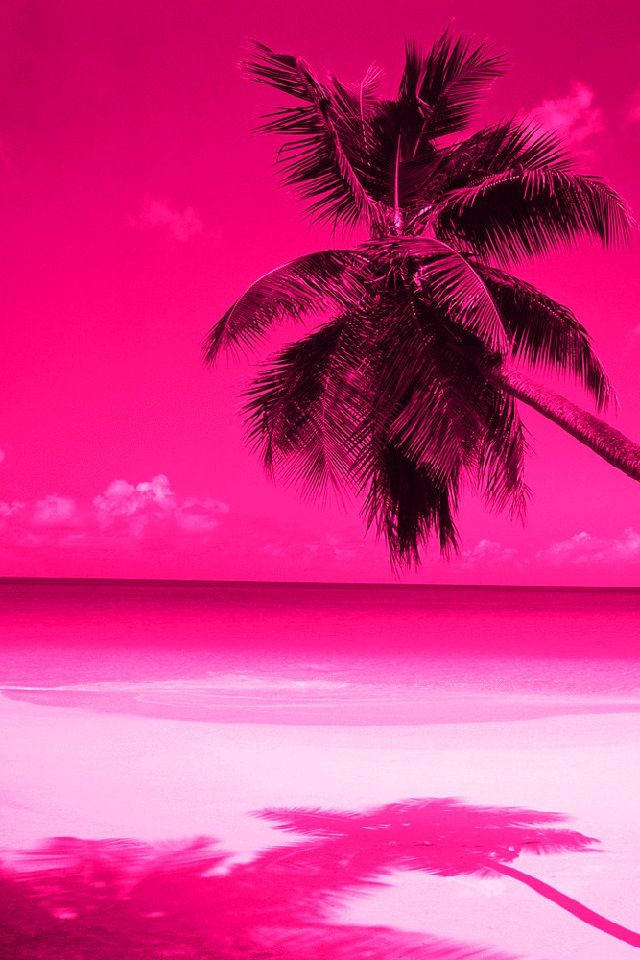 Iphone 5 Wallpaper Pink Wallpaper Pink Beach Cool Wallpapers