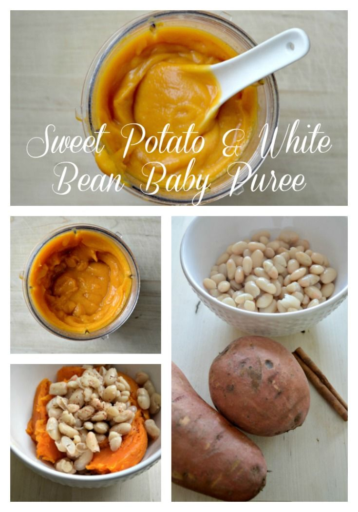 Sweet potato and white bean puree recipe homemade baby foods sweet potato and white bean puree is an easy and delicious homemade baby food recipe your forumfinder Choice Image