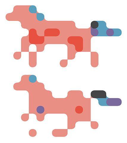 Siggi Eggertsson | Horses
