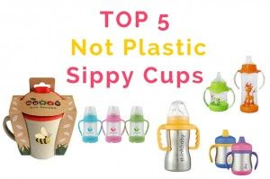 What is the best option for disposable cups