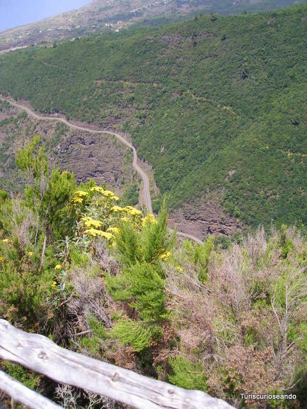 """Turiscurioseando.com: 10 Miradores de La Palma que no querrás perderte. Mirador en la carretera de las Mimbreras, una ruta de """"vértigo"""" en el norte de La Palma."""