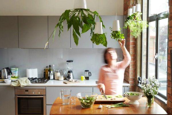 上下逆さま!天井から吊るすプランター「boskke」でキッチンの上に菜園空間を