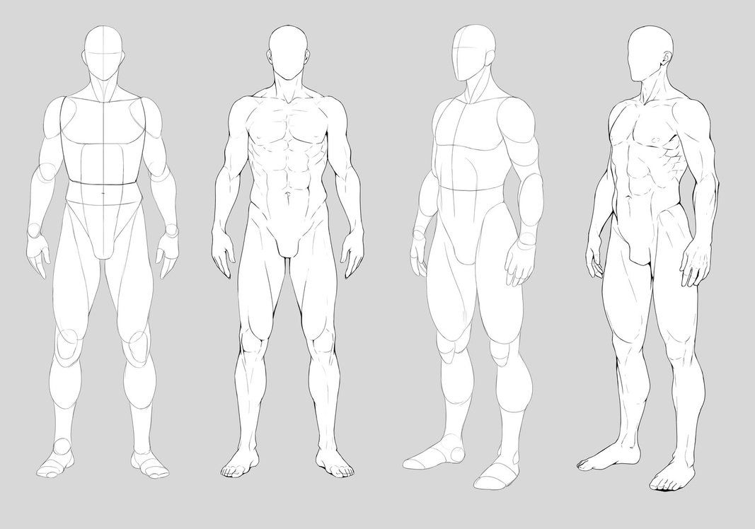 Male Anatomy By Https Precia T Deviantart Com On Deviantart Figure Drawing Reference Art Reference Poses Drawing Poses Male