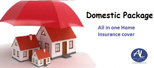 Domestic Package At Assurelink Insurance Agency Covers