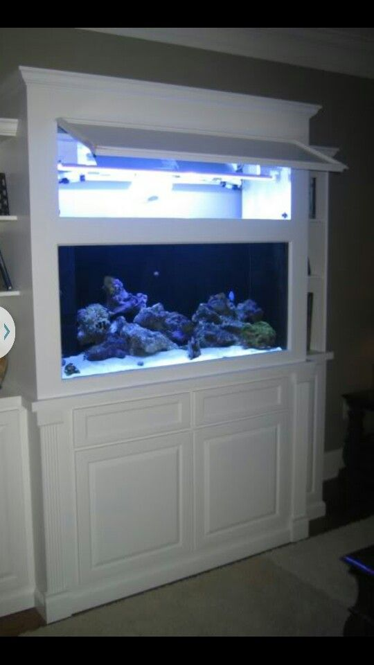 Built in fish tank with cupboard access House Pinterest