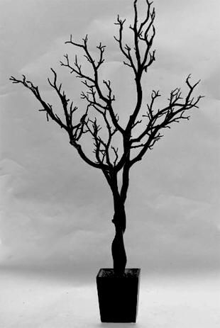 Black Wedding Tree... i want as centerpieces at my wedding