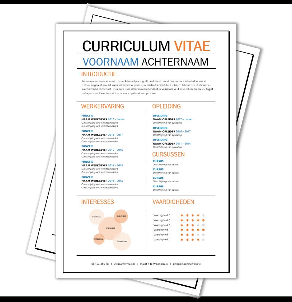 Voorbeeld CV Haarlem Creatief cv, Template en Creatieve cv