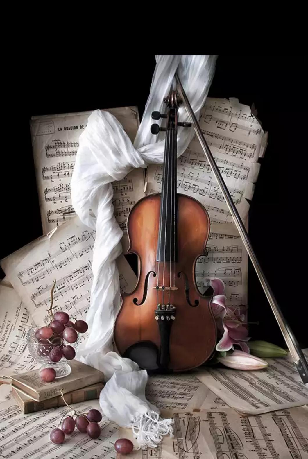Прикольные картинки с виолончелью