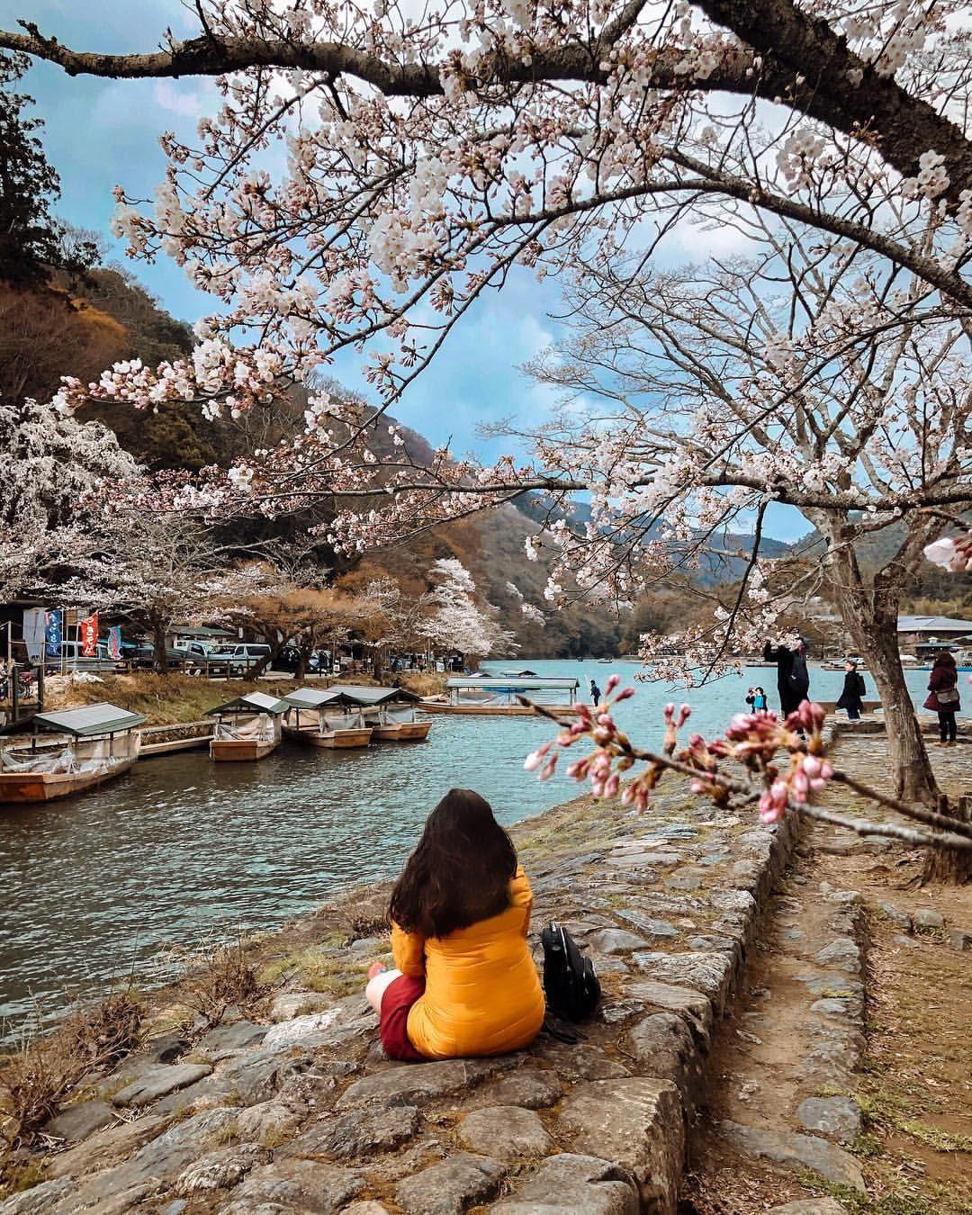 Japan Cherryblossom Japancherryblossom Cherry Blossom Season Is Around The Corner Watch Ou Places In Tokyo Beautiful Places In Japan Cherry Blossom Japan