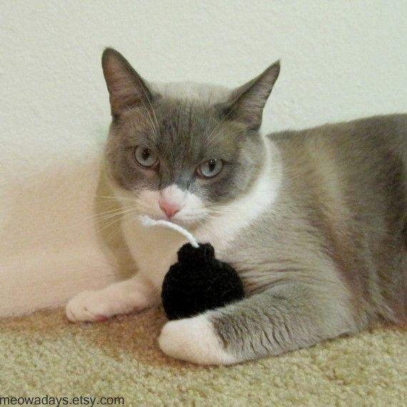 Too Funny Pet Cat Toys Catnip Cat Toy Angora Cats
