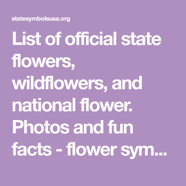 List Of Official State Flowers Wildflowers And National Flower Photos And Fun Facts Flower Symbols For All 50 States Flowers Flower Symbol Fun Facts,Small Bathroom Remodel Floor Plans