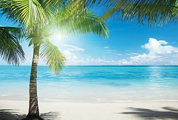 Tropical Beach View Wall Paper Wall Print Decal Wall Deco Indoor Wall Mural  Wallpaper Part 4