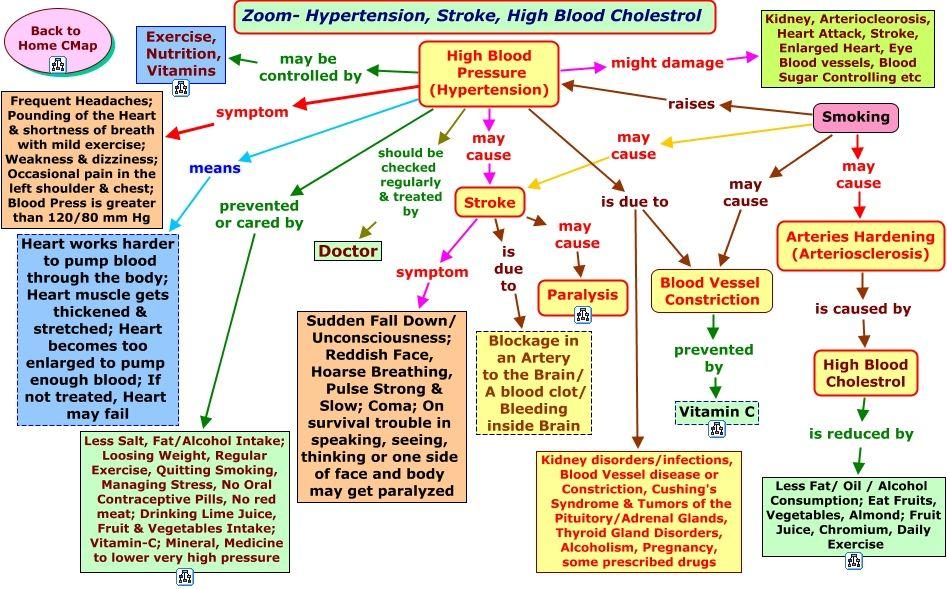 Hypertension Concept Map Hemodynamics Nursing Pinterest Blood