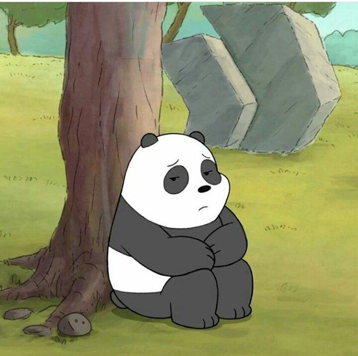 Panda We Bare Bears Ice Bear We Bare Bears We Bare Bears Bear Cartoon