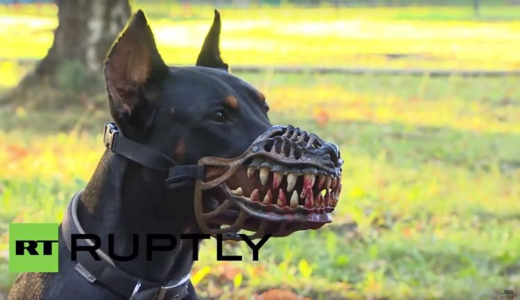 This Werewolf Muzzle Might Be The Coolest Halloween Costume For