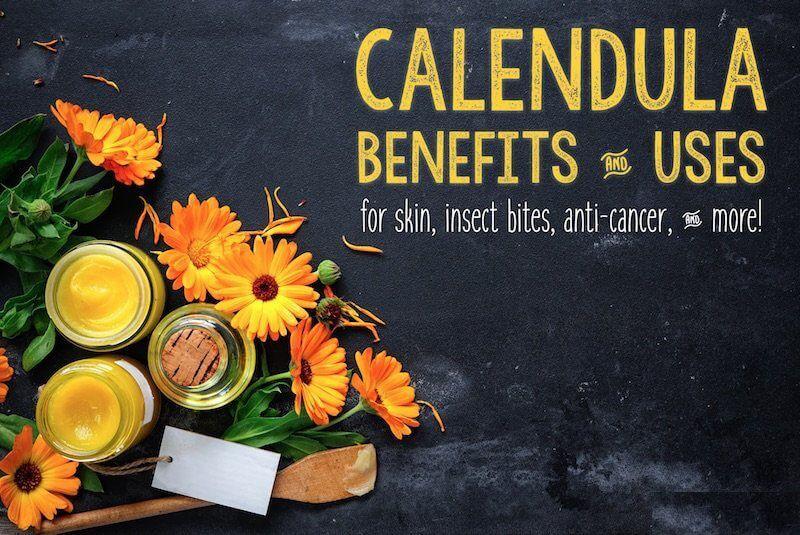 Calendula For Skin Get Ayurveda lendula for skin