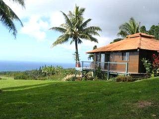Wondrous Anyas House Honeymoon Cottage Hana Maui Vacation Rentals Home Interior And Landscaping Ologienasavecom
