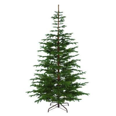 Martha Stewart Living 8 ft Indoor Norwegian Spruce Hinged
