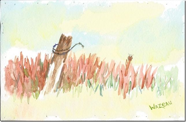 Fence Post This Lesson From Colette Pitchers Watercolor Painting