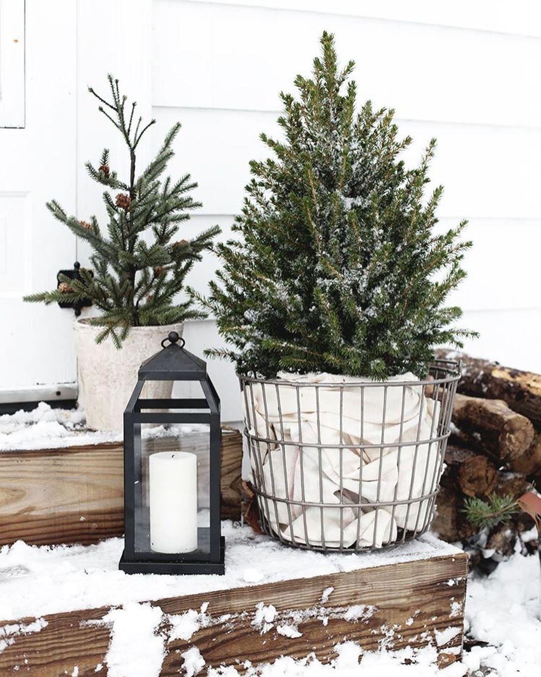 35+ Amazing Christmas Tree Decoration Ideas You Mu