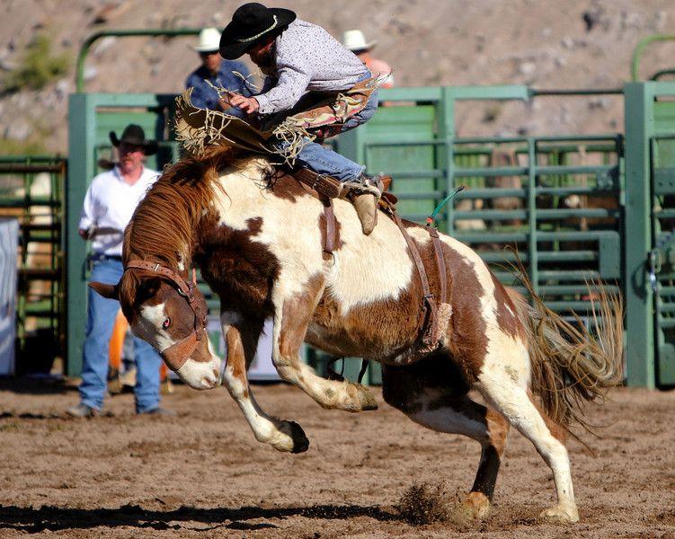 real cowboy