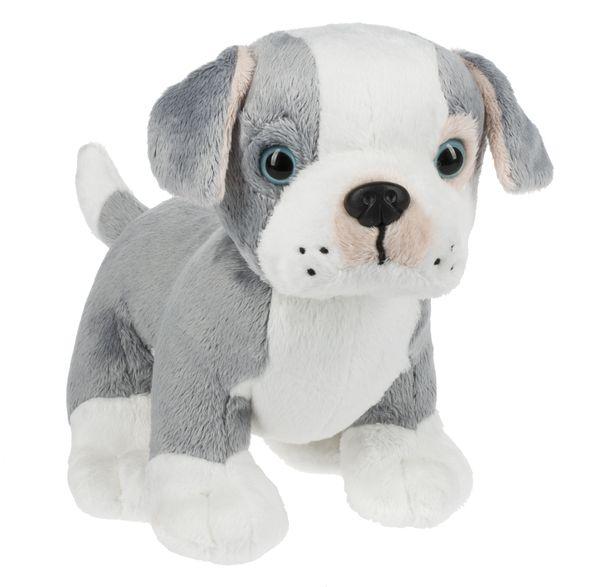 Webkinz Pitbull Puppy All Things Doll Pinterest Cute Stuffed