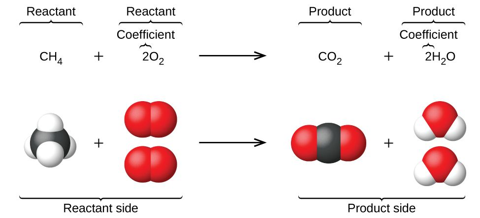 This figure shows a balanced chemical equation followed ...