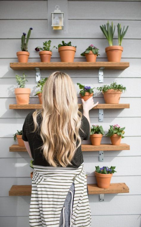 Diy Plant Shelving Wall Succulents Plant Wall Outdoor Plant Shelves Jess Oakes Positively Oakes Outdoor Shelves Plant Shelves Plant Wall