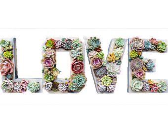 PLANTED WEDDING SET 12 x 9  Monogram Letter Succulent Vertical Garden is part of Home Made garden Planters - unplanteddiymonogrammedletter ref shop home active 4