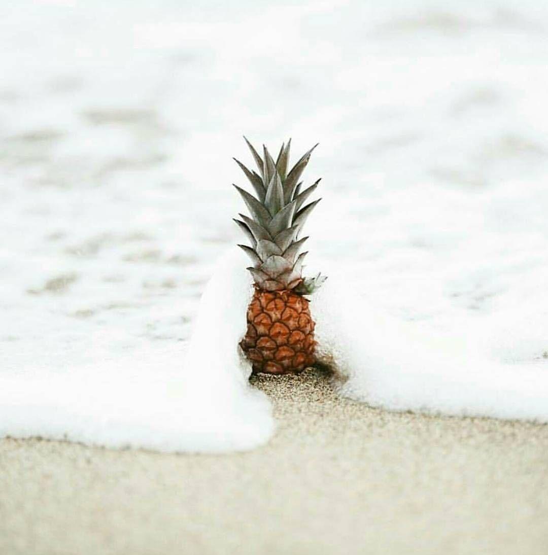 Summer Pineapple Summer Wallpaper Wallpaper