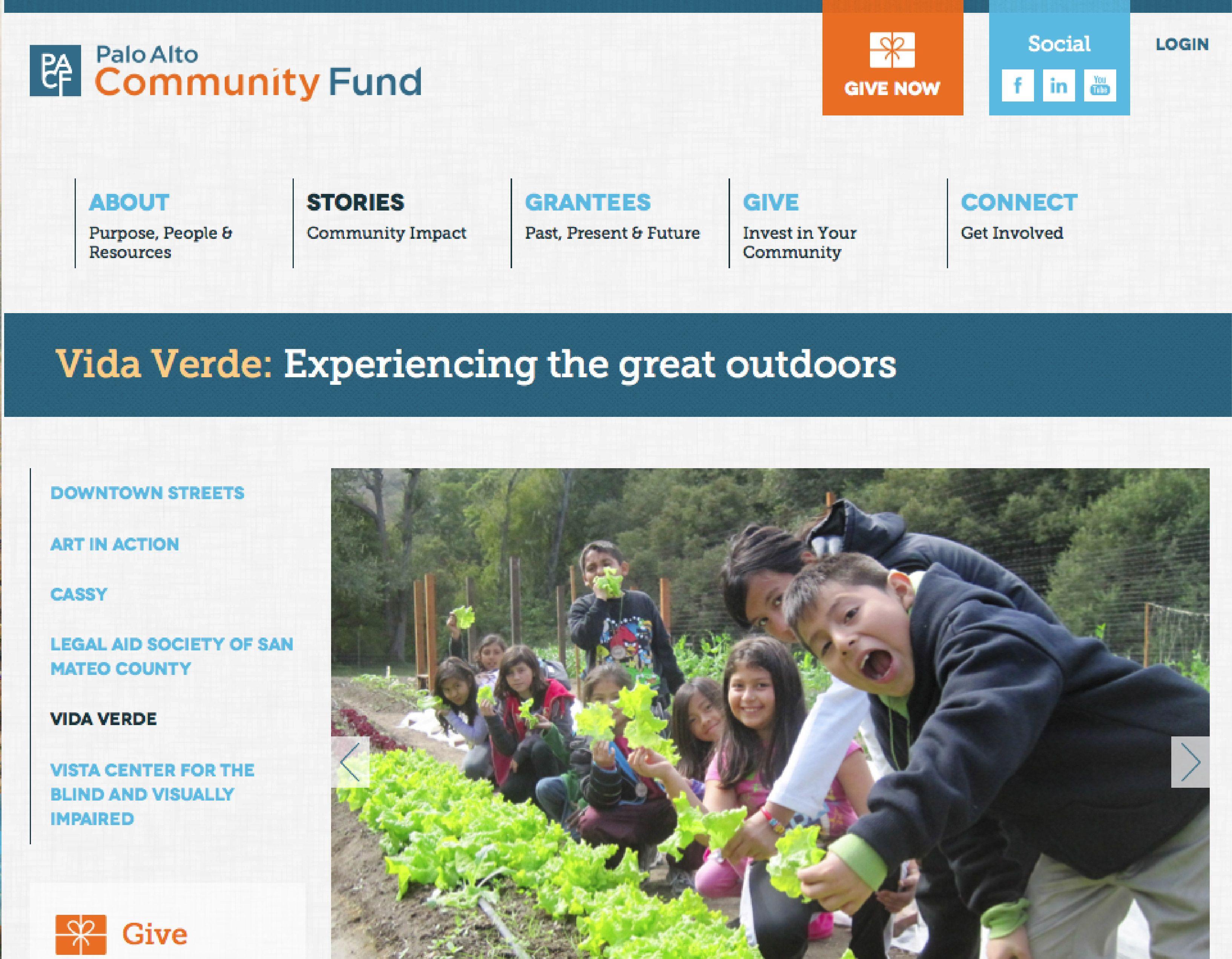 Web Design Interactive Design Palo Alto Community Fund Non Profit Design By Personify Interactive Design Personify Web Design