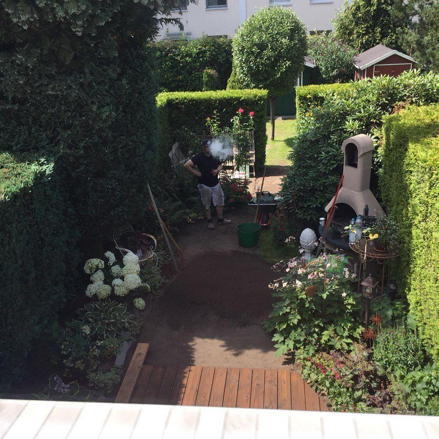 Alten Rasen Entfernt Boden Ebnen Fur Neuen Rollrasen Fun Diy Spass Garten Gartenarbeit Rollrasen Rasen Sonne So Rasen Entfernen Rasen Gartenarbeit