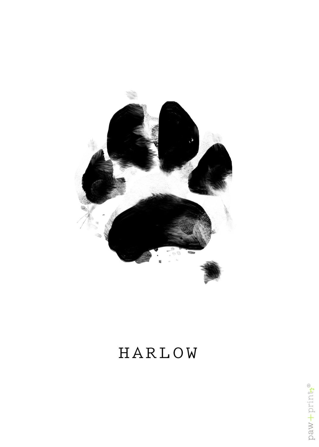 Paw print paintings by pawprint by JOYcoCreative on Etsy