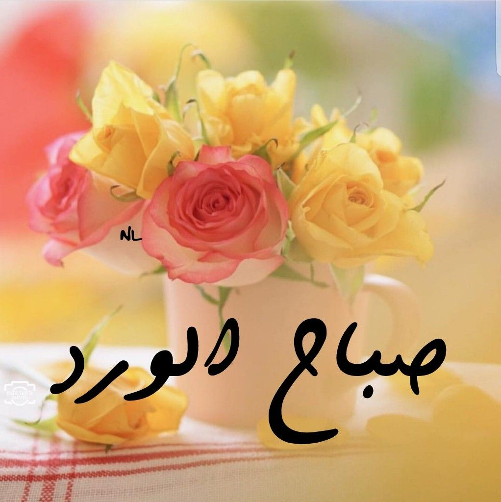 صباح الورد Good Morning Flowers Good Morning Arabic Good Morning Greetings